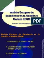EFQMvisualizar File Adjunto