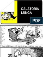 32833752-Calatoria-lunga