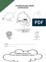 cuadernillo-plantas