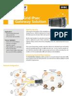 (DS) IPsec Gateway Solution.pdf
