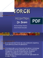 torch-090509163954-phpapp02