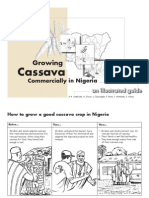 Casava Illust Guid Book