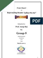 BAPM Final Report
