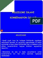 10. MELEZLEME ISLAHI