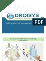 Droisys Development Process v 1.1