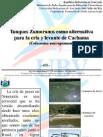 Tanques Zamoranos como alternativa para la producción de cachamas