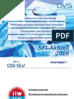 Demoversion_SFI2009