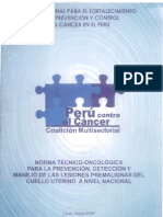 Norma Tecnica Oncologica Pap