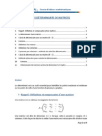 Les Determinants Des Matrices