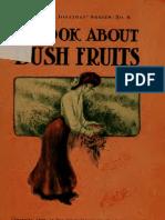 The Bush Fruits