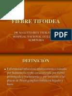 tifoidea_05