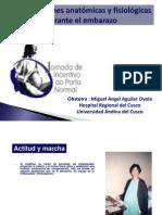 1.Modif. Anatomicas y Fisiologicas en Embarazo
