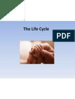 life cycle 9