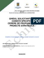 Pf91l_Ghid DMI 6.4. (Strategice) - Draft