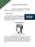 Lesiones locales del cerebro y localización de funciones (SEPARATA# 1)