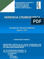 HERENCIA CROMOSOMICA