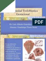 enfermedadtrofoblasticagestacional-110916122902-phpapp01