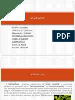 tuberculose1-110322221649-phpapp01