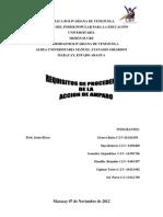 Tema IV Requisitos de Procedencia de Accion