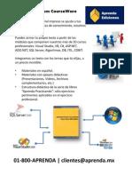Aprenda Custom Corseware.visual Basic 2008.Demo