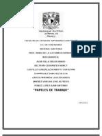 Papeles de Trabajo - Auditoria COMPLETO