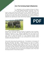 Contoh Descriptive Text Tentang Gajah