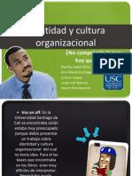 Identidad y Cultura Organizacional - VisualBee - VisualBee1