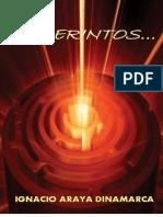 Laberintos - Ignacio Araya Dinamarca
