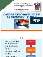 Causas Psicosociales de La Homosexualidad