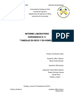 Informe 3 de Mineralurgia