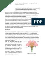 Bases moleculares de la floración