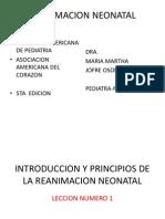 reanimacion-neonatal1 (4)
