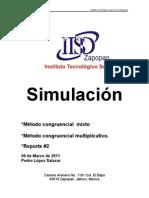 reportesimulaciones2-110308234936-phpapp01