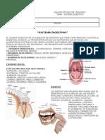 Guia de Biologia Sist. Digestivo