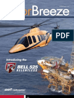 Bell 407 Tail Rotor Erosion