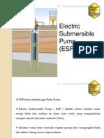 Presentation ESP