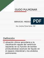 Edema Agudo Pulmonar Expo