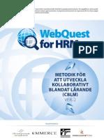 Methodology SWE v2.0 Inet