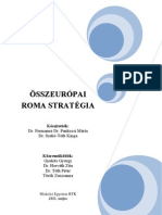 1128 X-Osszeuropai Roma Strategia-Elso Munkadokumentum