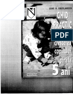 21653099-ghid-practic-1-1
