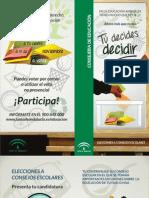 DipticoCE2012 (1)