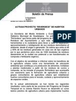 "18-08-2011 Activan proyecto ""REVERDECE"" de Huertos Urbanos."