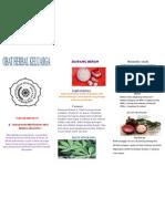 Herbal Leaflet