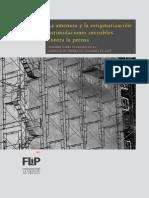 Informe FLIP 2008