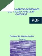 Tema 10.- Musculo Cardiaco