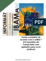 IBAMA 2013 - Teoria de informática completa com 200 questões com gabarito
