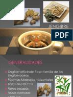 Presentacion Jengibre
