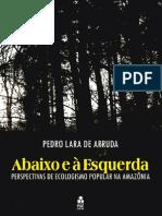 Abaixo e à Esquerda - Pedro Lara de Arruda