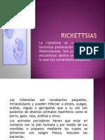 Rickettsias