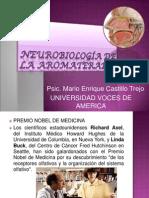 neurobiologia-aromaterapia (PPTminimizer)